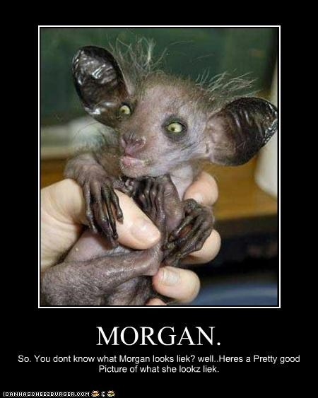 MORGAN. So. You dont know what Morgan looks liek? well..Heres a Pretty good Picture of what she lookz liek.