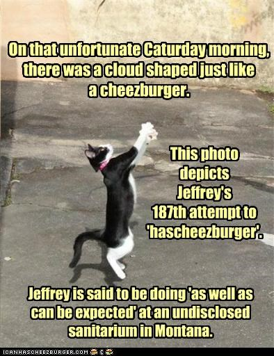 Cheezburger Image 5394344192