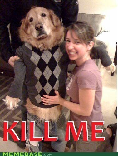 Death dogs kill Memes suit - 5394366208