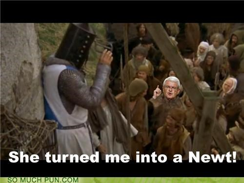 double meaning,literalism,monty python,monty python and the holy grail,newt,newt gingrich