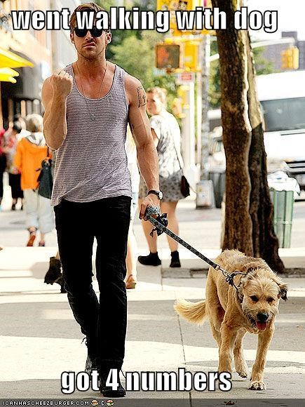 dogs flirting Hall of Fame numbers phone numbers Ryan Gosling success - 5397010944