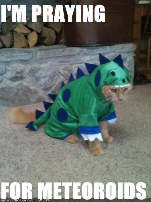 caption,captioned,cat,costume,dinosaur,do not want,dressed up,i am,meteoroids,praying,tabby