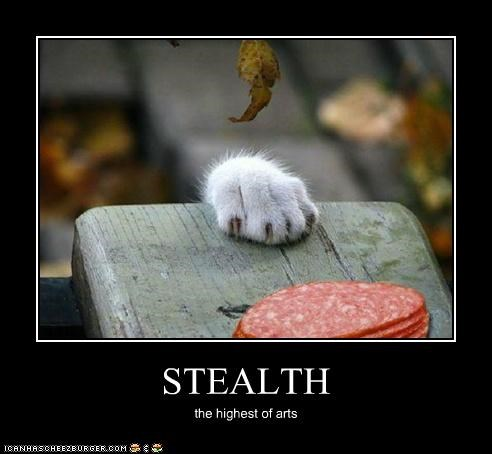 STEALTH the highest of arts