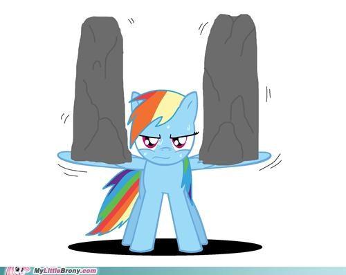 extreme extreme training ponies rainbow dash wing training - 5398389248