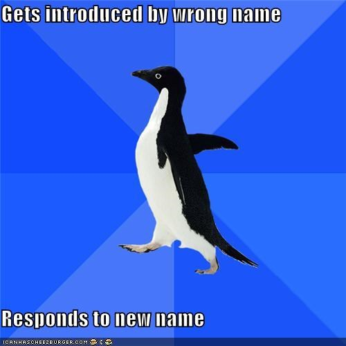 animemes,introduction,name,Oh Hi,response,socially awkward penguin