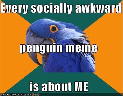 me Memes Paranoid Parrot socially awkward penguin - 5399627008