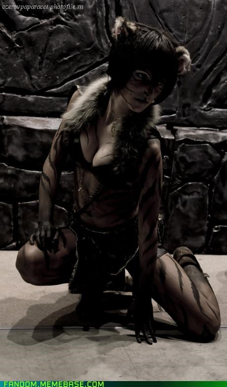 cosplay khajiit Skyrim video games - 5399674880