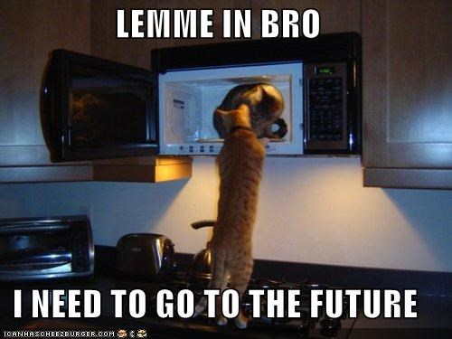 animals cat Cats future I Can Has Cheezburger microwave time travel time travelers time traveling - 5400004096
