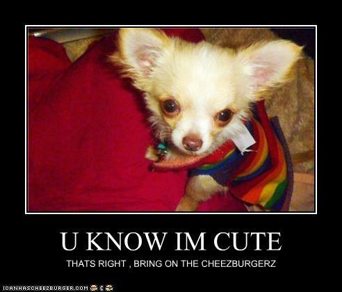 Cheezburger Image 5400495104