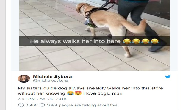 a funny story of a guide dog sneaking his owner into a different shop while shopping