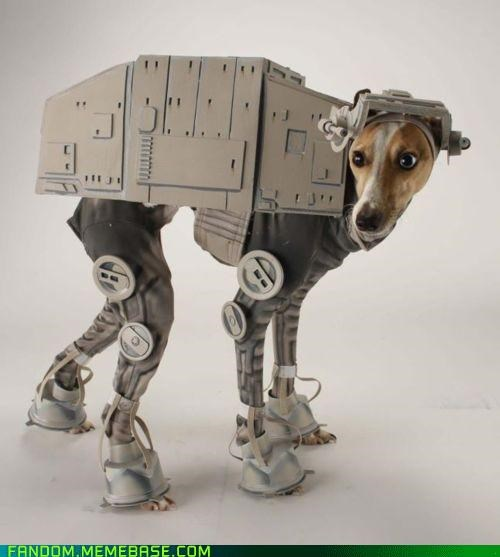 at-at walker cosplay cute dogs star wars - 5400971008