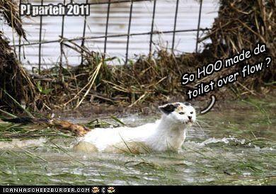 PJ parteh 2011 So HOO made da toilet over flow ? (