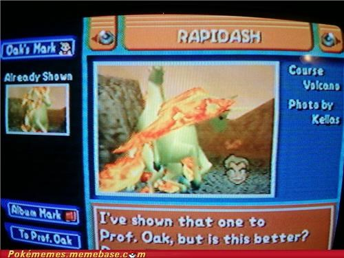 gameplay,pictures,Pokémon,pokemon snap,professor oak,rapidash