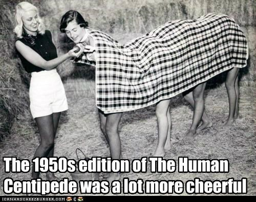 Cheezburger Image 5401385472