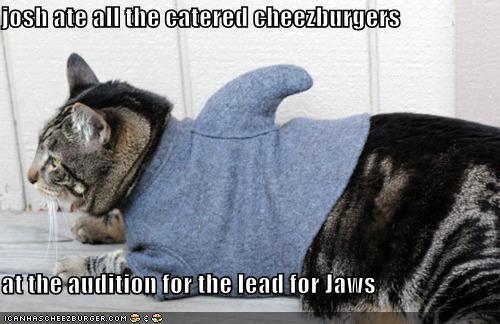 Cheezburger Image 5401637888