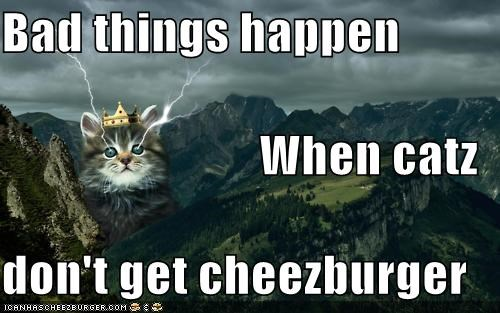 Cheezburger Image 5402096896