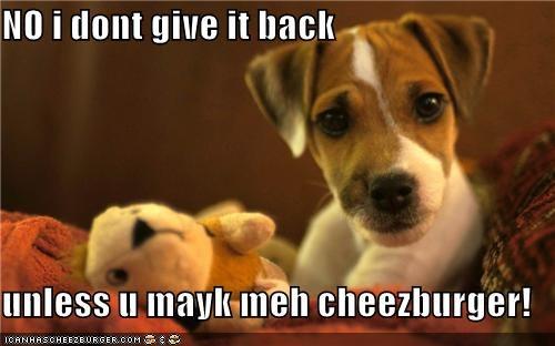 Cheezburger Image 5402186240