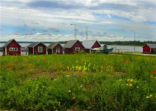 cabins,cottages,europe,fishing,getaways,Sweden,tulips