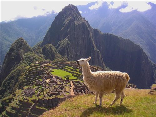 ancient ruins,aweosme,clouds,getaways,Hall of Fame,llama,machu picchu,mountains,peru,south america