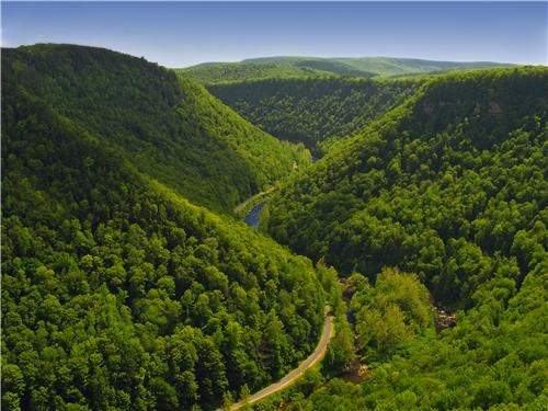 Forest getaways green hills horizon north america pennsylvania trees united states - 5402651392