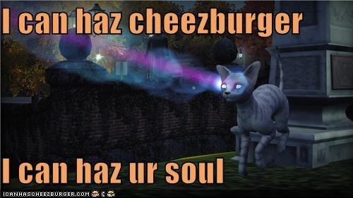 Cheezburger Image 5402827264