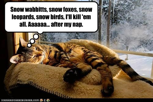 Snow wabbitts, snow foxes, snow leopards, snow birds, I'll kill 'em all. Aaaaaa... after my nap.