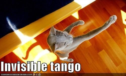 arm,caption,captioned,cat,dancing,holding,invisible,posture,tango