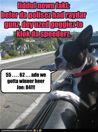liddul nown fakt: befor da polisez had raydar gunz, dey uzed goggiez to klok da speederz. 55 . . . . 62 . . . adn we gotta winner heer Joe: 84!!!