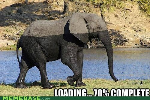 elephant loading Memes Sims splines water - 5403197952