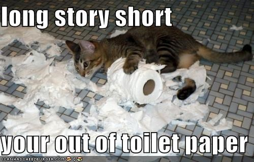 accident best of the week caption captioned cat explanation Hall of Fame long oops out paper short story toilet toilet paper - 5403630336