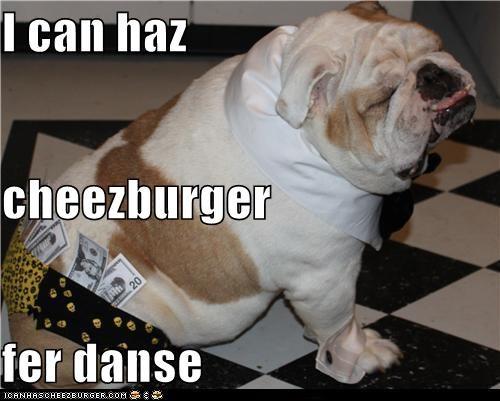Cheezburger Image 5404126720