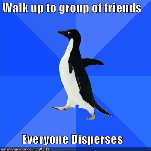 dispersement,friends,group,socially awkward penguin