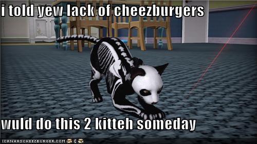 Cheezburger Image 5405445632