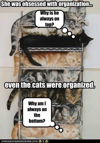 She was obsessed with organization... Why is he always on top? even the cats were organized. Why am I always on the bottom?
