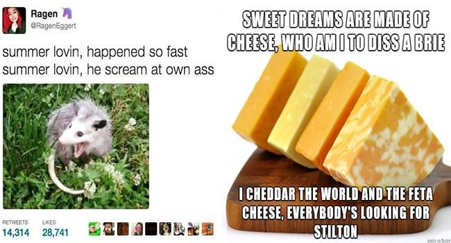 Music funny memes Memes funny music memes puns - 5405957