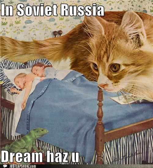 asleep,bedtime,bizarre,caption contest,cat,children,kids,lizard,mixed media,sleep,sleeping,wtf