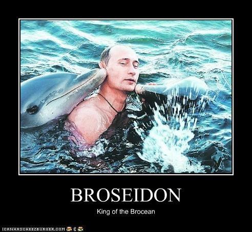 bros,dolphins,political pictures,Vladimir Putin