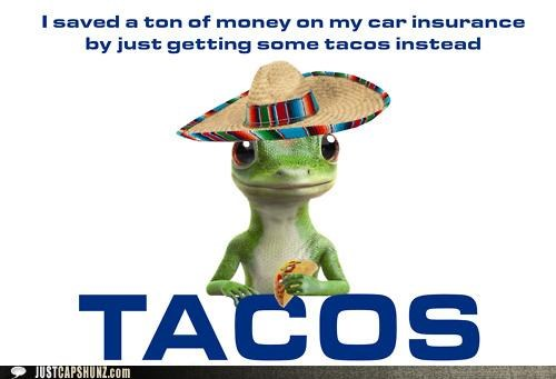 car insurance,delicious,gecko,GEICO,geico gecko,mexican food,money,saved money,tacos