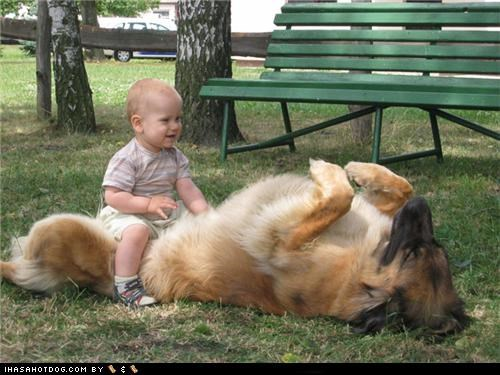 adorbz awww baby child friends friendship goggie ob teh week kid leonberger playing - 5407795712