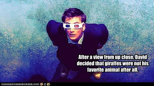3-d glasses animal David Tennant doctor who favorite giraffes