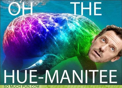 better homophone homophones hue hugh laurie humanity improvement manatee Reframe - 5408572416