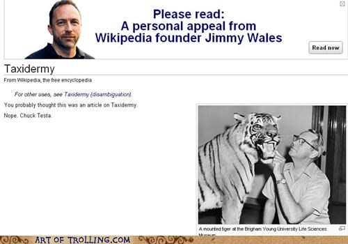 article,Chuck Testa,taxidermy,wikipedia