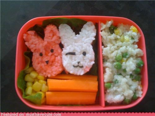 bento,bunnies,epicute,lunch,meal,rice,salad,veggies