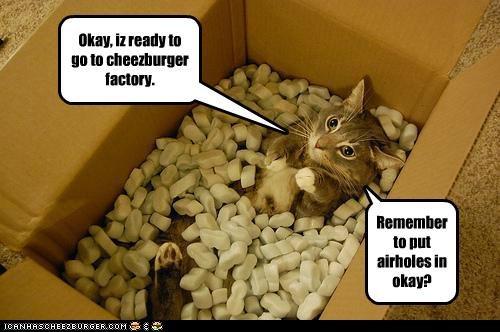 Cheezburger Image 5410177280