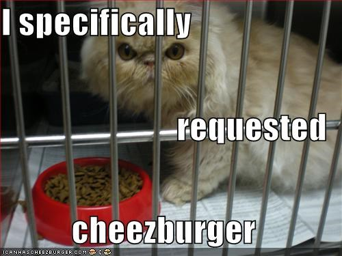 Cheezburger Image 5410180864