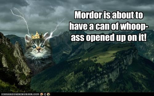about can caption captioned cat kitten lightning lolwut Lord of the Rings morder prepare shoop whoop ass - 5410290944
