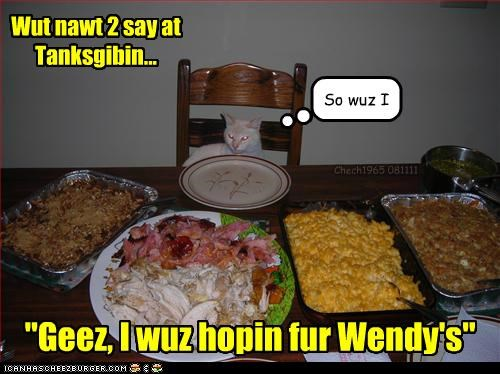 Cheezburger Image 5410363392