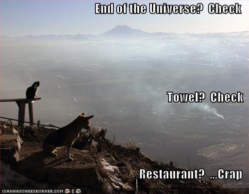 Cheezburger Image 541047552