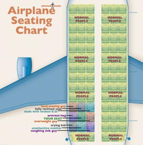Airplane Seating Chart,Every Damn Time,infographic