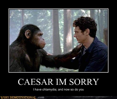 caesar chlamydia hilarious Planet of the Apes STDs